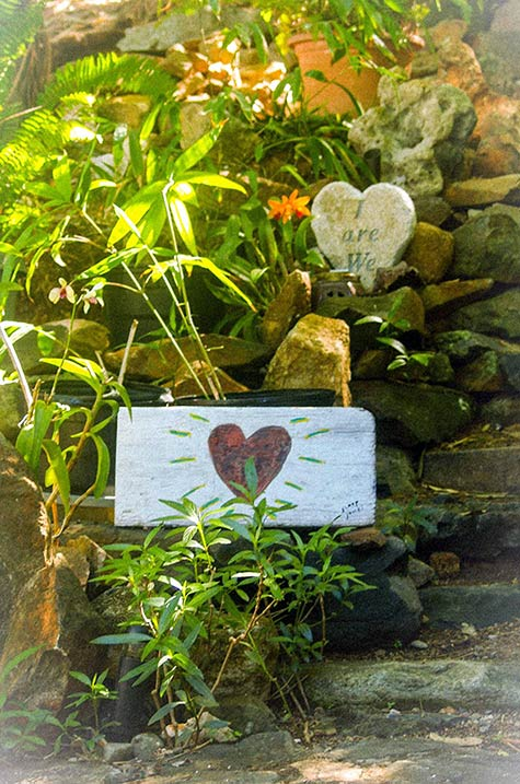 Garden Hearts at Sloop Jones Studio on the East End of St. John